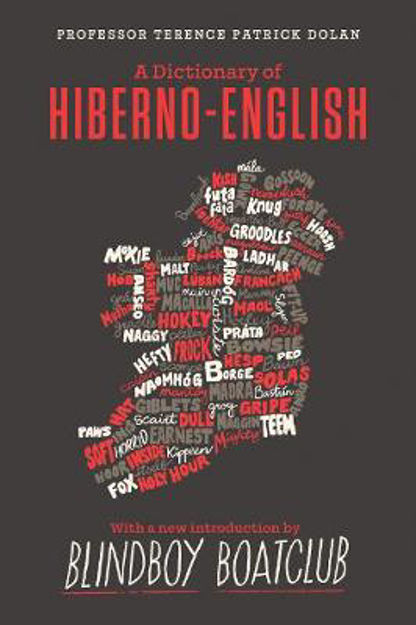 dictionary-of-hiberno-english