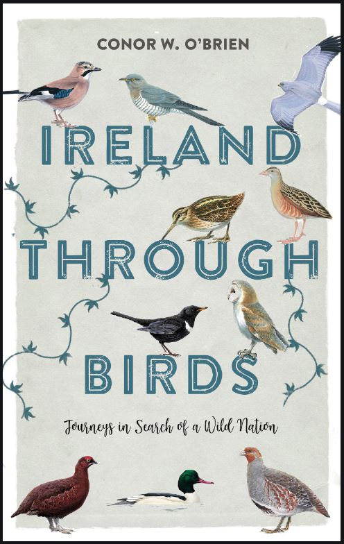 Ireland-through-birds