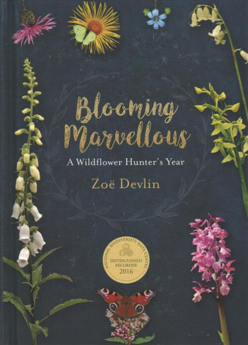 blooming-marvellous-wildflower-hunter