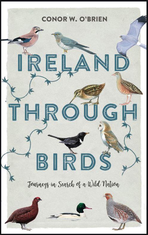 Ireland-through-birds