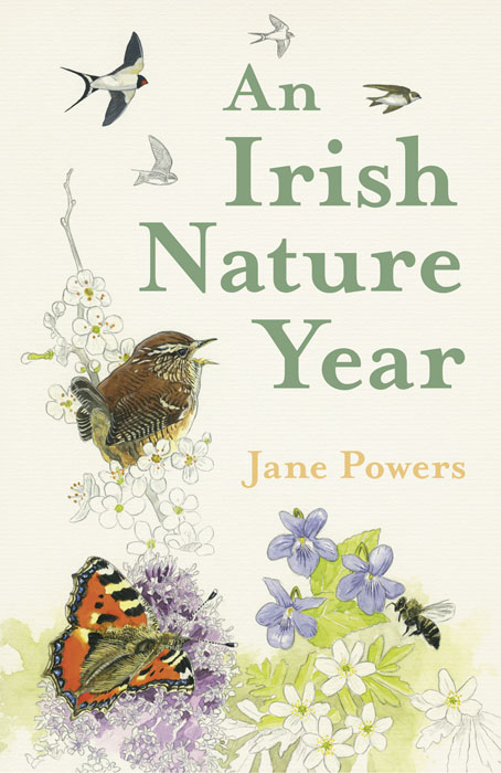an-irish-nature-year