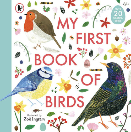 my-first-book-of-birds