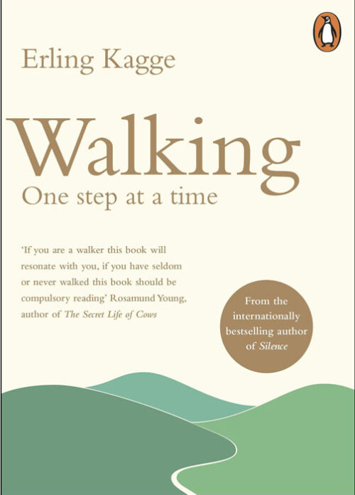 walking-one-step-at-a-time