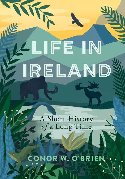 Life-In-Ireland