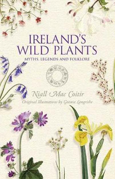 Irelands-wild-plants