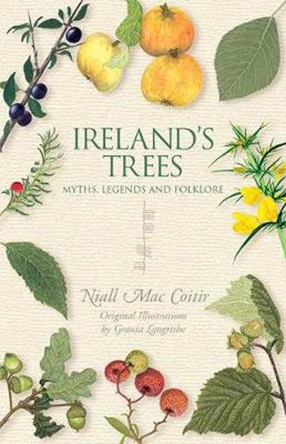 irelands-trees
