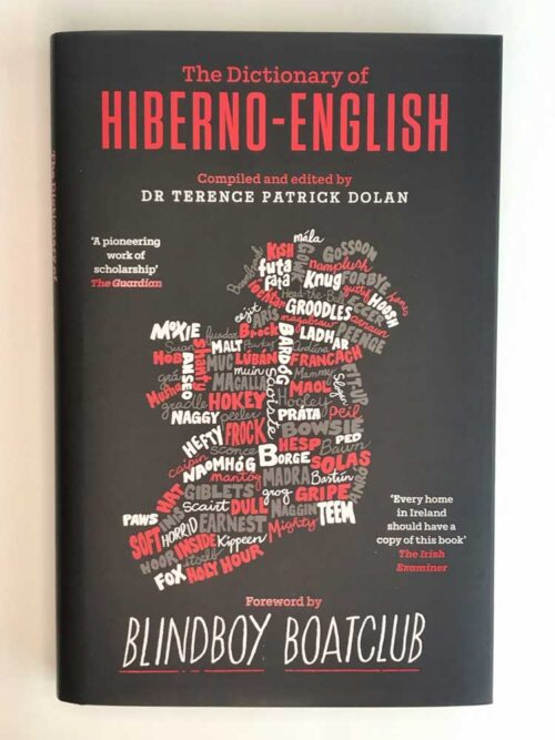 the dictionary of hiberno english