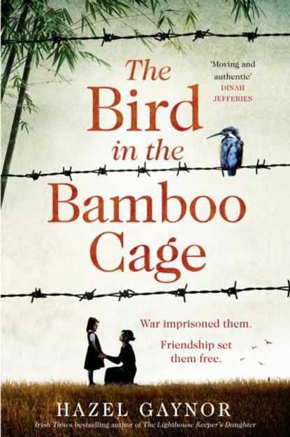 the-bird-in-the-bamboo-cage