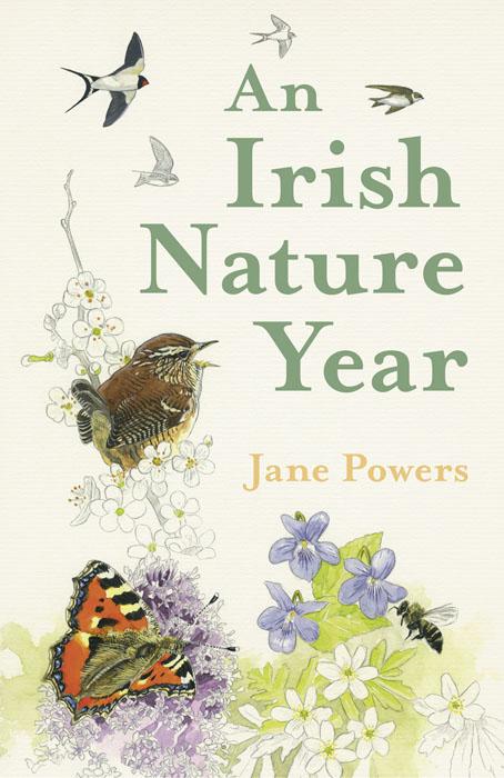 an-irish-nature-year