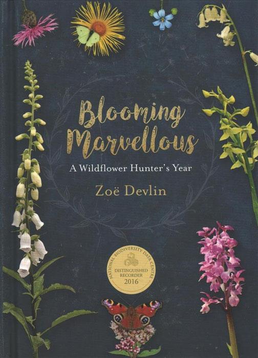 blooming-marvellous-wildflower-hunter