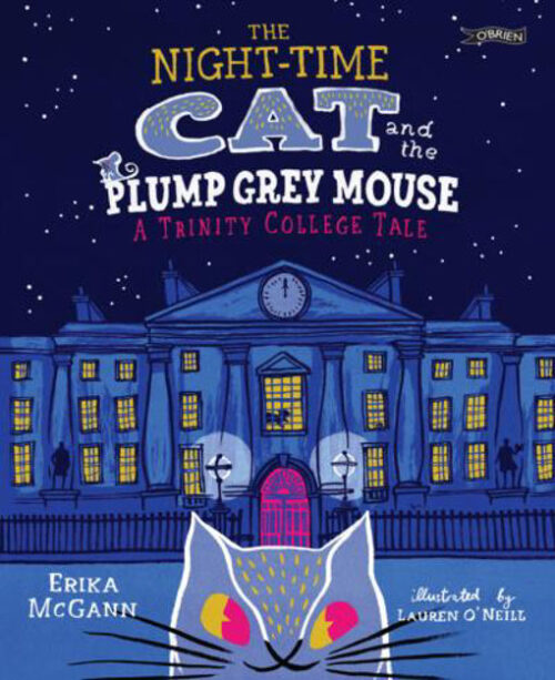 the-night-time-cat-and-the-plump-grey-mouse